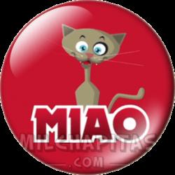 06 Gatto MIAO